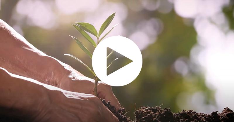 Sustainability Video